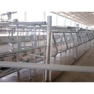 LAKTO Balıkkılçığı Hızlı Çıkış Süt Sağım Sistemi